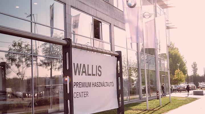 wallis-lead